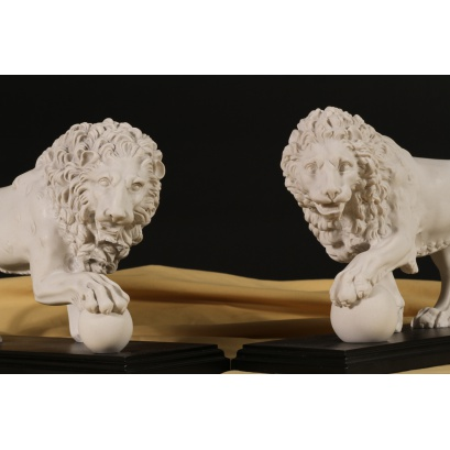 Medici & Vacca Lion White on Black (pair)